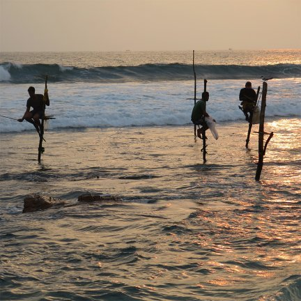 Competitive Stilt Fishing
