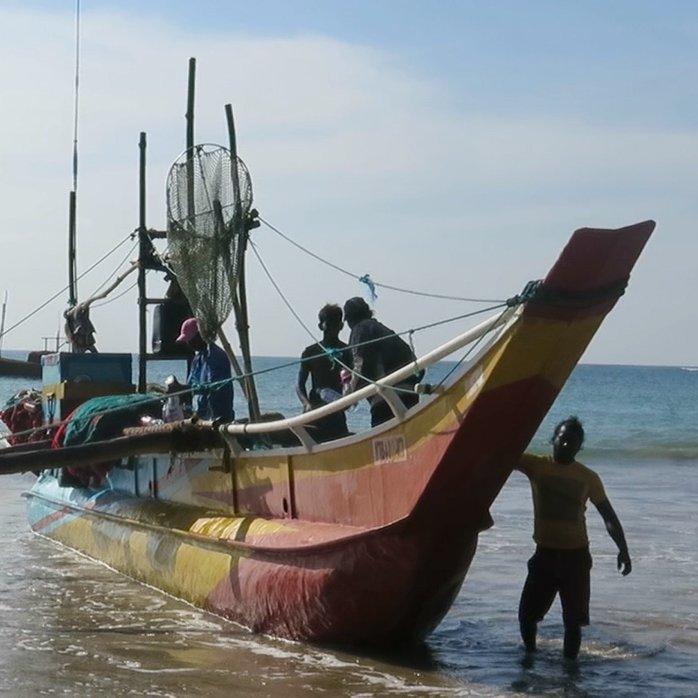 Local Fisherman Catamaran Cruise, Weligama